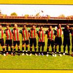 2007-08. Figurine Panini. Squadra