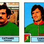1975-76. Figurine Panini. Cattaneo-Casone