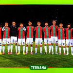 2014-15. Figurine Panini. Squadra