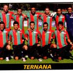 2010-11. Figurine Panini. Squadra