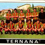 1972-73. Figurine Panini. Squadra