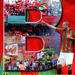 Maggio 2012. TRIONFO ROSSOVERDE. Il campionato della Ternana 2011-12