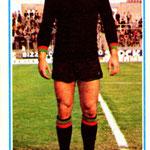 1974-75. Figurine Panini. Nardin