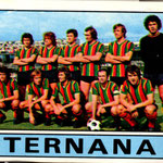 1975-76. Figurine Panini. Squadra