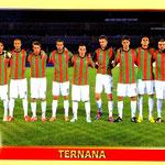 2013-14. Figurine Panini. Squadra