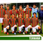 2012-13. Figurine Panini. Squadra Primavera