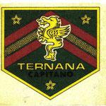 1974-75. Figurine Panini. Scudetto texilina: Capitano