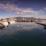 Reykjavik- Hafen