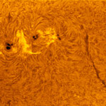 Sonne in H-Alpha (AR2565/2567)