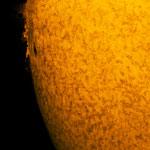 Sonne in H-Alpha mit kleinen Protuberanzen