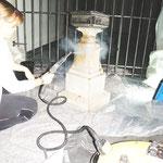 Reinigung mit Mikrodampftechnik.