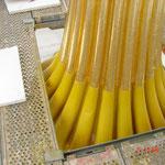 Bei den flächenhaften Vergoldungsarbeiten in Ölgoldtechnik