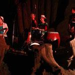 Im Elefantengehege im Zoo Halle