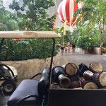 Tropical Island • Kleine Autos bringen die Trommeln zum Workshop Platz
