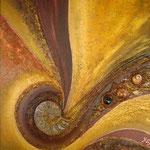 Sahara mit Ammoniten