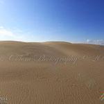 Dunes al delta de l'Ebre