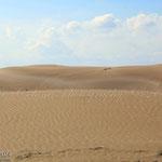 Dunes del Delta de l'Ebre