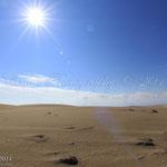 Dunes punta del fangar