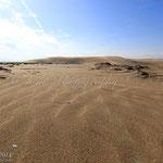 Dunes de sorra fina punta del fangar
