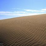 Desert de la punta del fangar