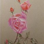 """""""Роза Пинк"""". Размер: 30x40 см Материал: Тонированная бумага, пастель Оформление: Нет/по желанию Продается Цена: 5000 руб."""