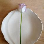 白いお皿 直径約16cm