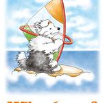 disegno di un bobtail che fa windsurf