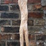 Erstgeborener, Weide, 148 cm