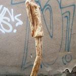 o.T., Rhobinie, 110 cm mit Sockel