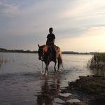 Pferdebadestelle Lanker See