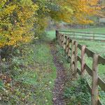 Der Reit- und Fußweg ab unserem Hof