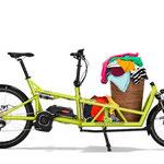 Riese und Müller Lasten e-Bike, e-Cargobike Load Zubehör und Ausstattungsoptionen mit Stauraum für allerelei