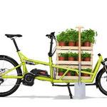 Riese und Müller Lasten e-Bike, e-Cargobike Load Zubehör und Ausstattungsoptionen mit Gemüseboxen