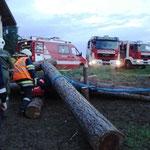 Die Holzstämme mussten mit Seilwinden bewegt werden.