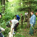 Entrindung und Vorbereitung im Wald.