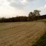 Das kostenlos zur Verfügung gestellte Grundstück von Poldi und Dr. Max Schlachter