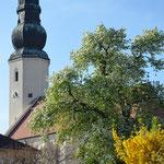 Pfarrkirche Wolfsbach
