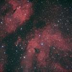IC 1318, Newton 150/750, Idas LPS-P2 Filter, Avalon-Montierung,Mgen, Canon 1000DA, Hier war noch der Fangspiegel verspannt