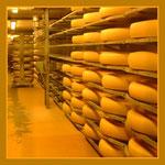 Das Leben ist ... alles Käse, odrrrr ???