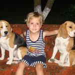 Дети обожают биглей. Элла и Бонита
