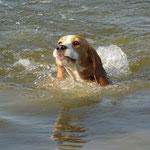 """Элла: """"Я плыву!!!"""""""