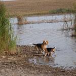 Элла и Дарий на пруду