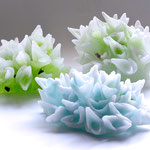 screaming coral blue , diameter 24xH11cm
