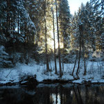 am Schwarzwasserbach