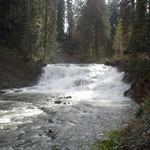 Schwarzwasserbach bei viel Wasser