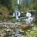 Schwarzwasserbach bei wenig Wasser
