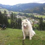 Richtung Unterwestegg/ Bergstüble