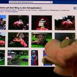 Schweinchen Bente auf Facebook
