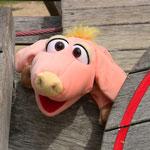 Schweinchen Bente auf Karperfahrt