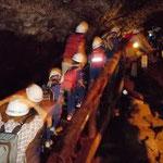 コウモリ洞窟探検